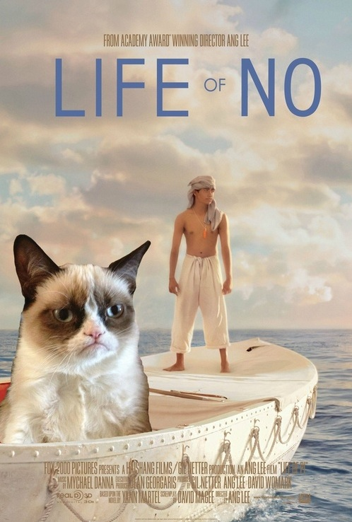 Life Of Pi Remake Grumpy Cat NO