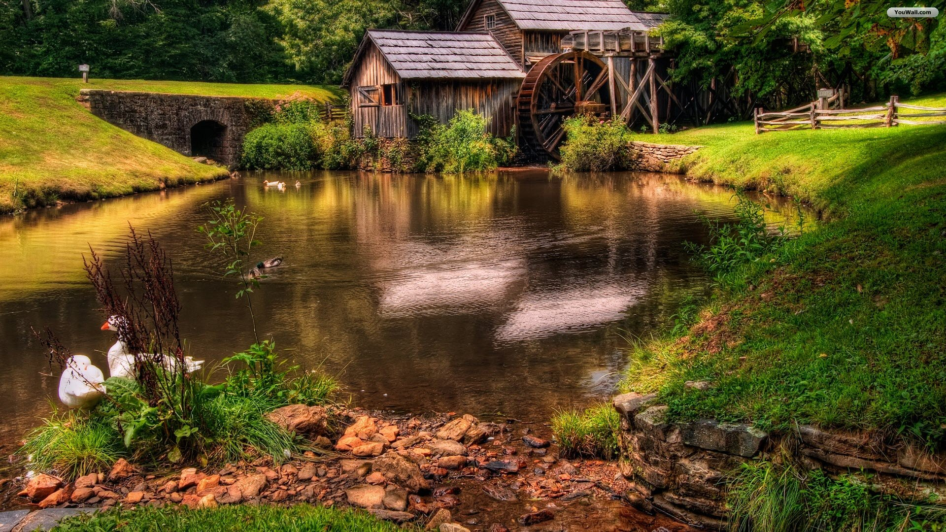 Cabin By The Pond Wallpaper