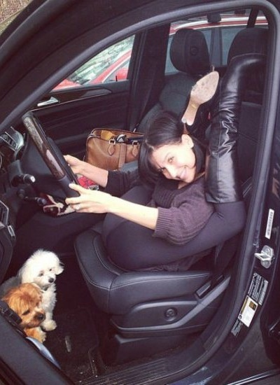 How To Drive With Your Dogs In The Leg Area Of The Car