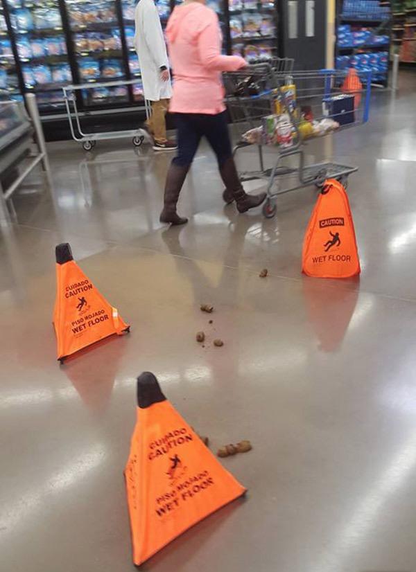 Caution Wet Floor Loaded Poop Don Slip Walmart Faxo